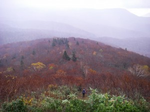 oofukasawa1